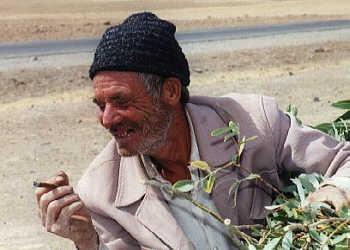 A farmer with a cigar